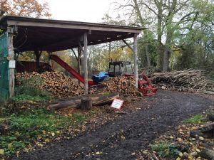 Bradfield Woods: wood yard